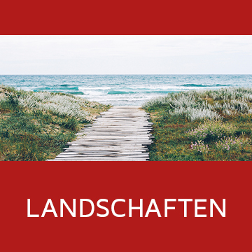 Galerie Kategorie Landschaften
