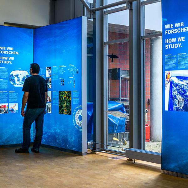 Ausstellungsbau / exhibition construction