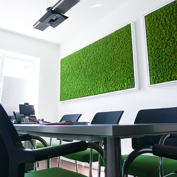 Mooswände / moss walls