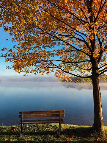 Herbst_11_1198x1611mm