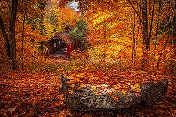 Herbst_7_2260x1493mm