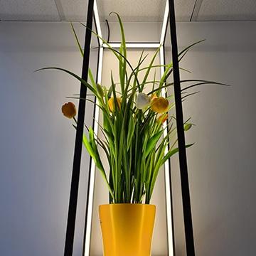Lichtinstallation_Beleuchtung_Rahmen