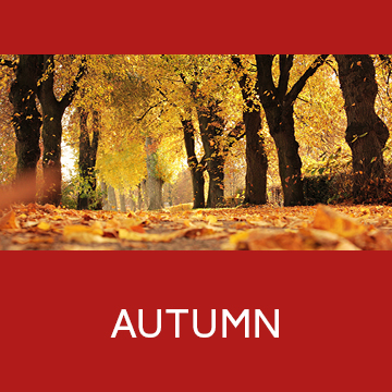 gallery category autumn