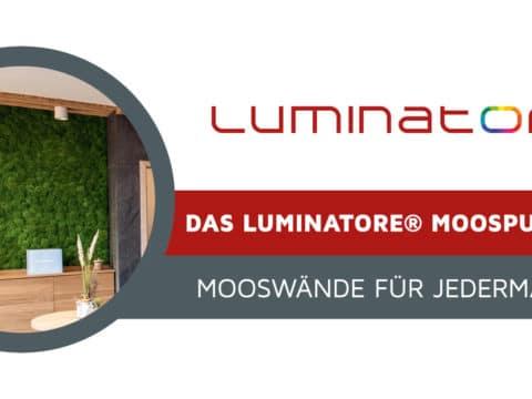 Das Luminatore® Moospuzzle. Mooswände für Jedermann.